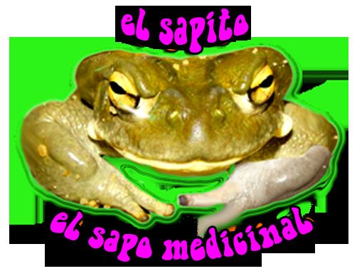Name:  Sapito.png Views: 172 Size:  247.0 KB