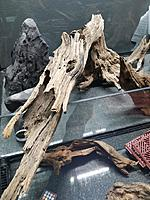 Large Driftwood log, hollow, from LifeIsBeautifullUniq (Etsy, Owner: Amy Chambers)    One of the focal point pieces in The Rainforest Exhibit.