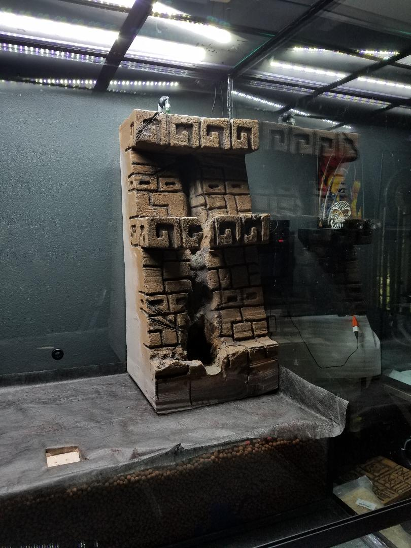 Name:  TRE Ruinintank01.jpg Views: 57 Size:  142.5 KB