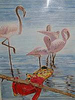 Beauties of the Lagoon (African Reed Frog and Flamingoes)