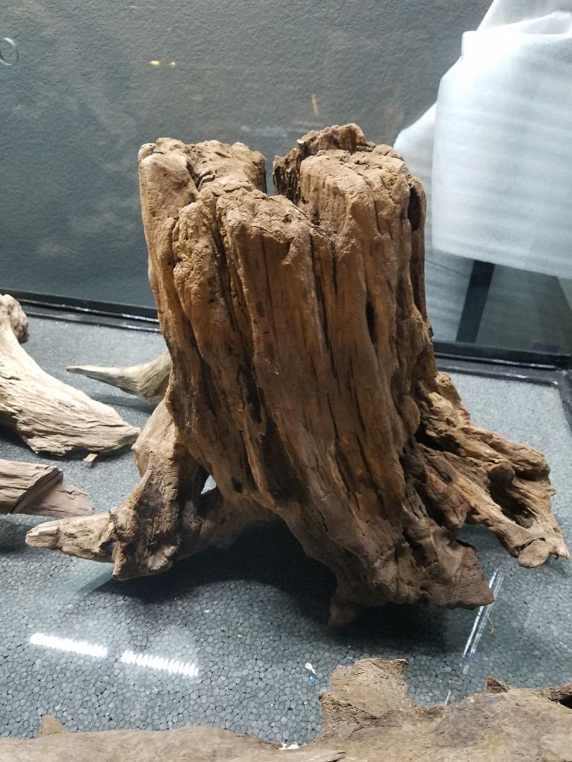 Name:  Driftwood 002.jpg Views: 16 Size:  149.2 KB