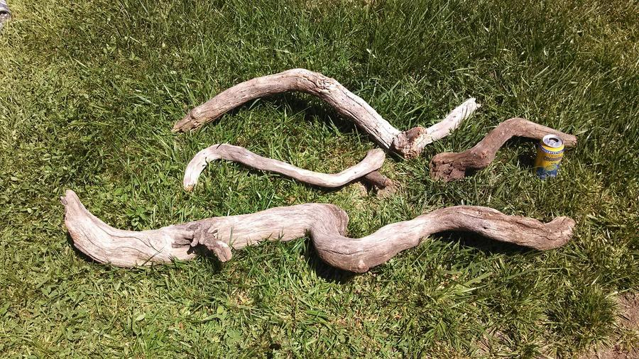 Name:  Driftwood Pic.jpg Views: 238 Size:  187.7 KB