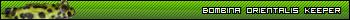 Name:  bosigbar2.png Views: 15071 Size:  5.2 KB