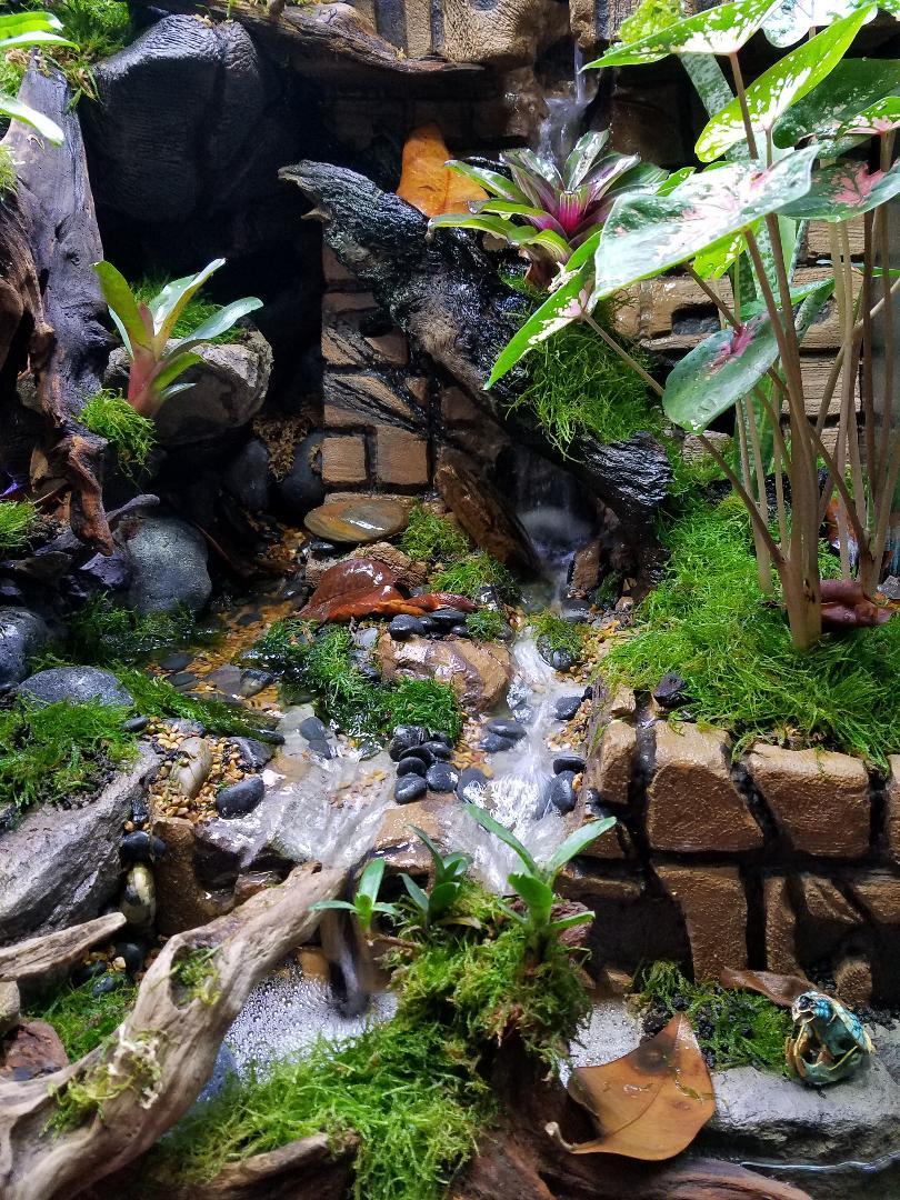 Name:  TRE Streamwaterfalls1.jpg Views: 134 Size:  251.4 KB